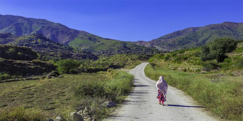 K-P govt approves land for women university in Swat