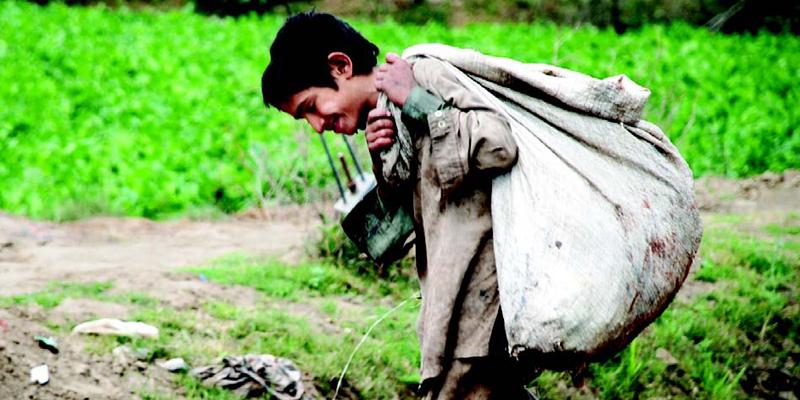 '2.5 million Street children await Govt help'
