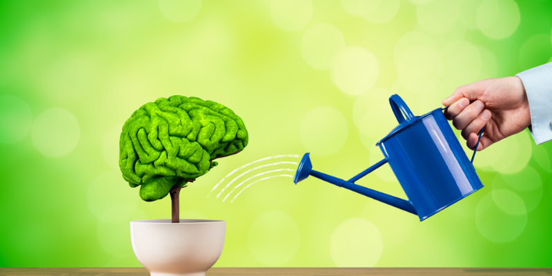 دماغی نشوونما کے لیے بہترین عمر کیا ہے؟