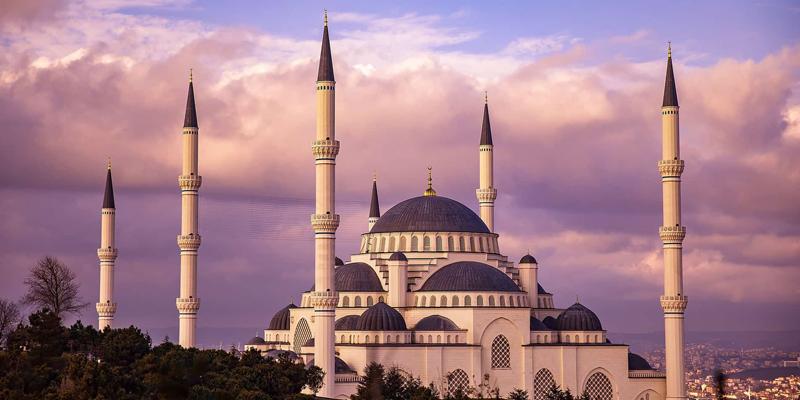 ترکی میں مقبول ترین ڈگری پروگرامز اور مضامین